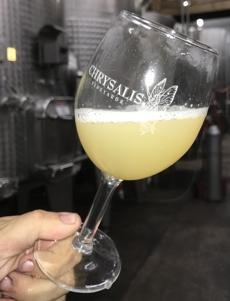 Glass of Fermenting Wine