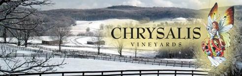 Bull Run Valley in Winter