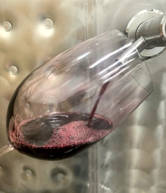 Wine from the Tank